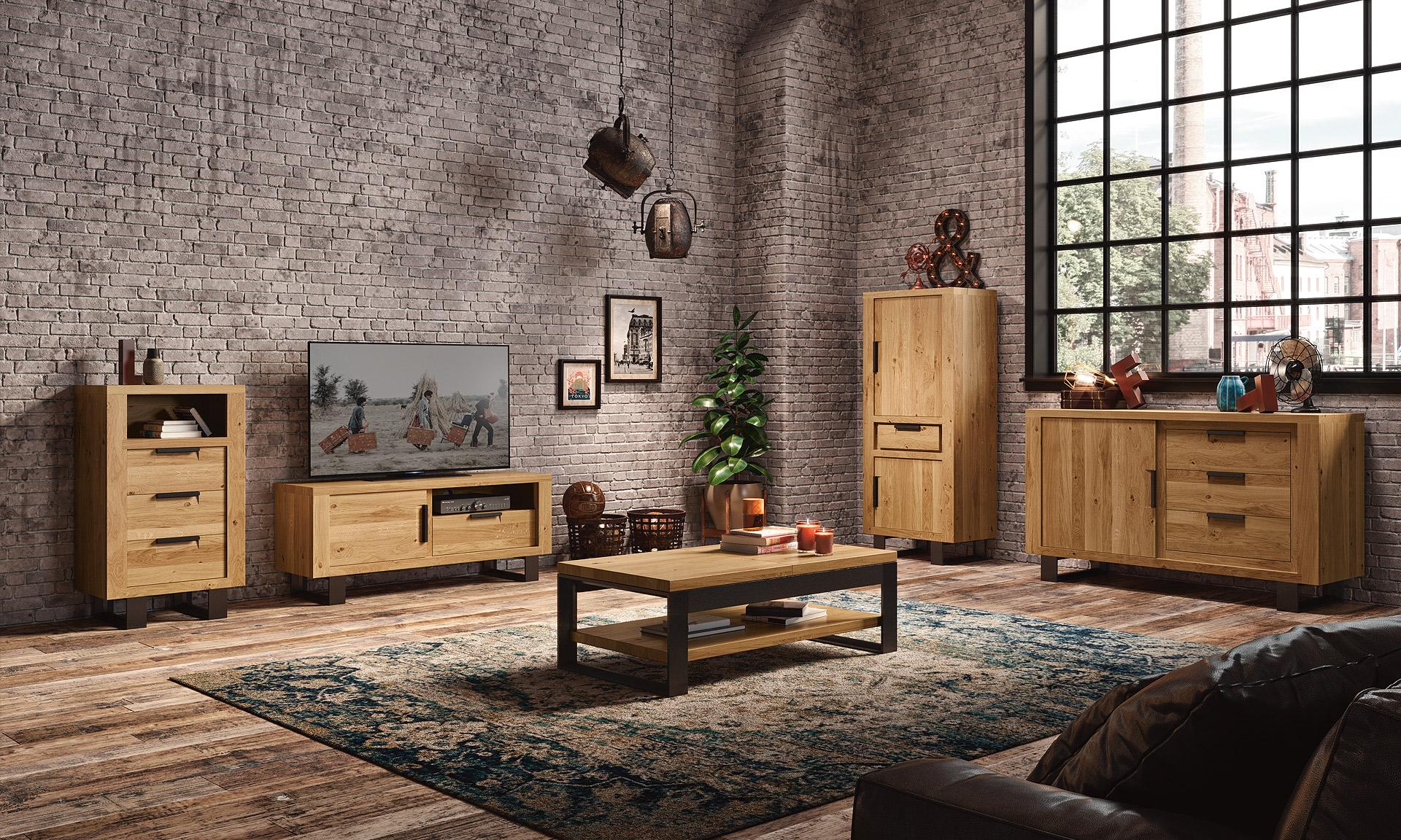 meubles-sejour-moderne-style-industriel-bois-metal-botan